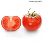 buah tomat sumber karotenoid