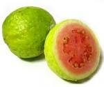 guava jambu biji / jambu batu